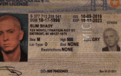 michigan drivers license microperforation